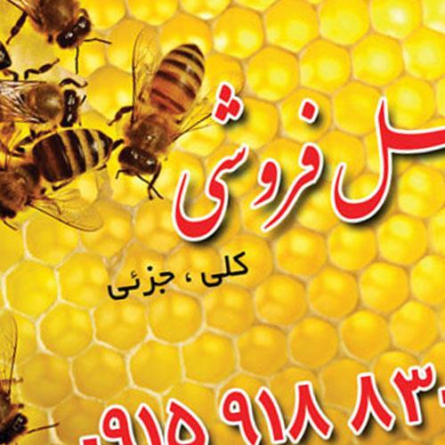 طراحی کارت ویزیت عسل فروشی