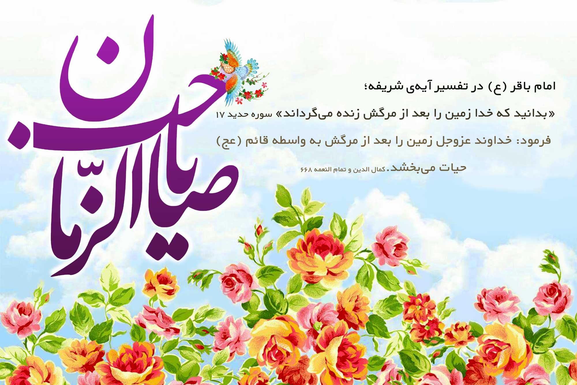 banner-nime-shaban