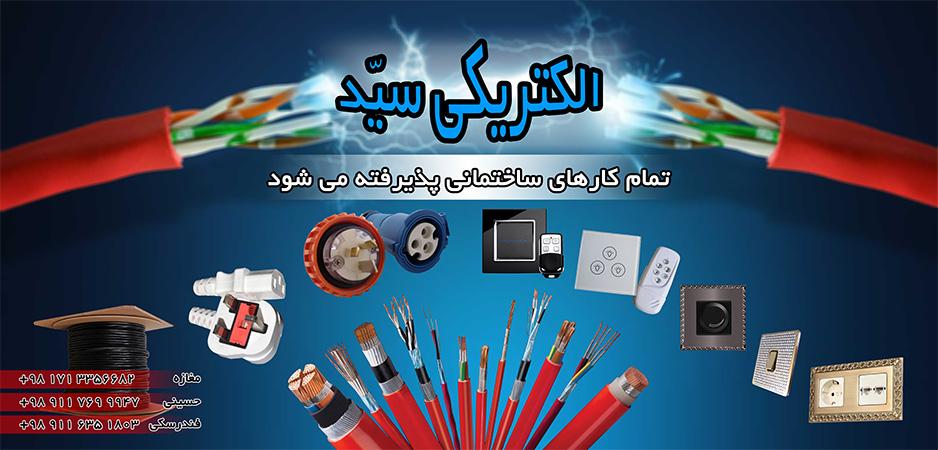 seyyed-electric